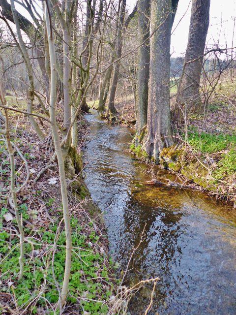 Náhon z Rokytenky na Dymlovský rybník(potažmo na Lauterbachúv mlýn)