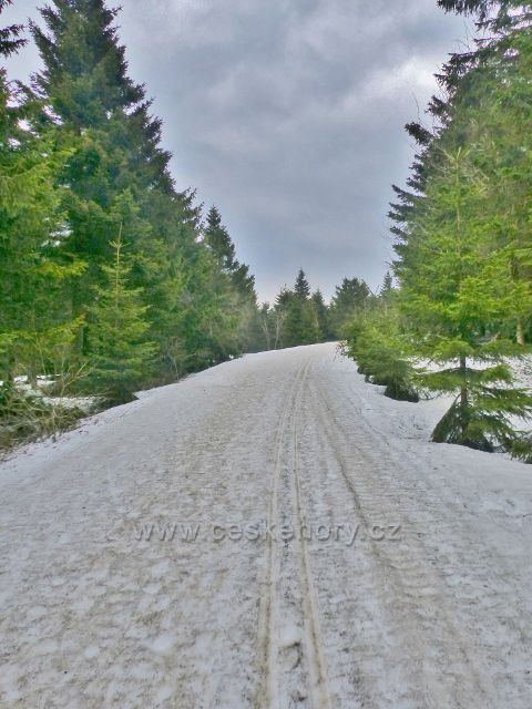 Šerlich -běžkařská trať na Velkou Deštnou