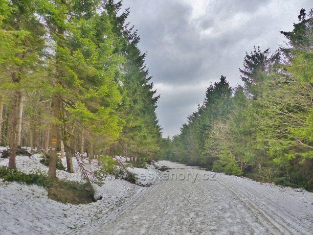 Šerlich - běžkařská trať na Velkou Deštnou