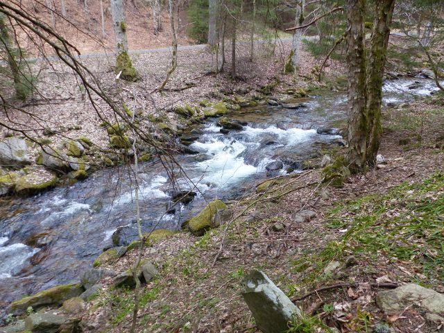 Peřeje horního toku Moravy