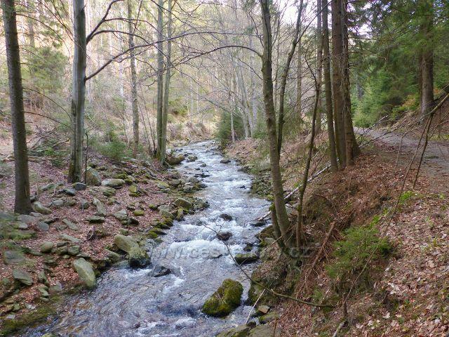 Jarní vody řeky Moravy
