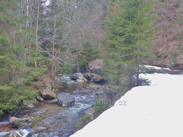 Zasněžená cesta podél Moravy