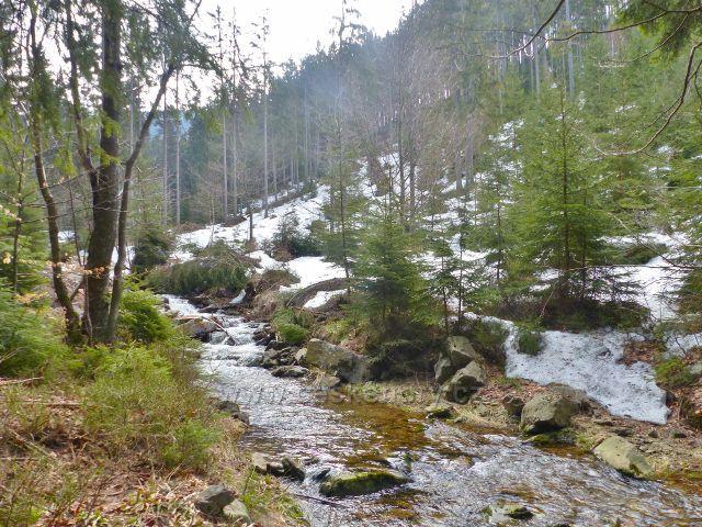 Levostranný přítok Moravy u chaty Vilemínka