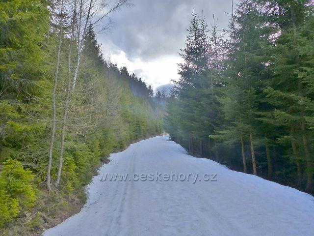Cyklostezka z Vilemínky na Slamník byla v zimní sezoně přeměněna v upravenou běžeckou trať