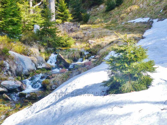 Přítok Moravy sbírá vody z úbočí Stříbrnické a Králického Sněžníku