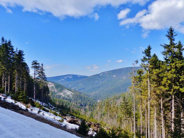 Pohled do údolí Moravy a na protější hřeben masivu Králického Sněžníku
