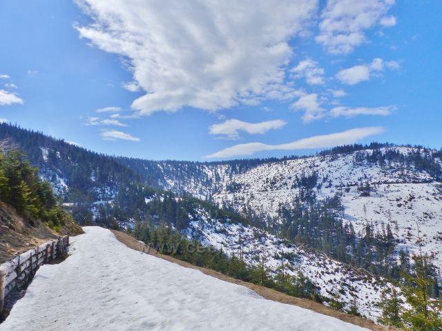 Na vrstevnicové cestě je dosud souvislá vrstva sněhu uježděného úpravou běžecké tratě