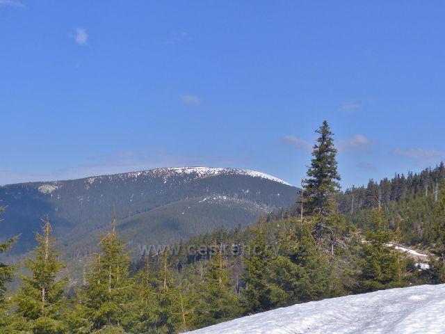 Pohled z úbočí Sušiny ke Králickému Sněžníku