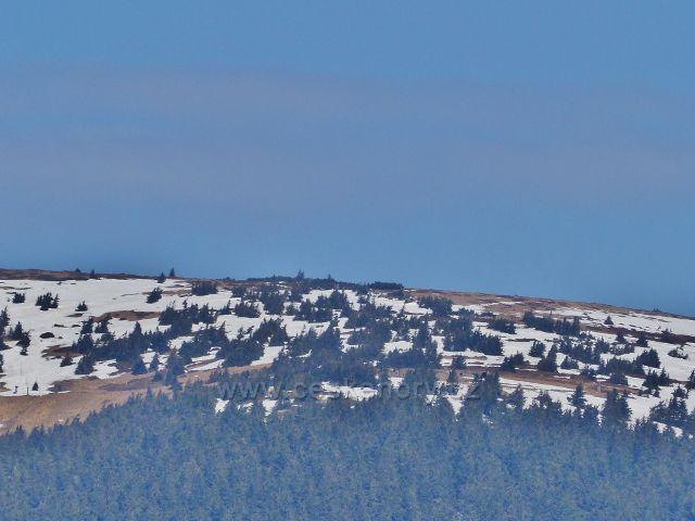 Přiblížený vrchol Králického Sněžníku
