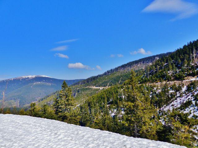 Zpětný pohled z úbočí Uhliska na vrstevnicovou cestu. V pozadí Králický Sněžník