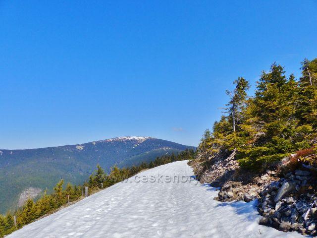 Pohled z úbočí Uhliska ke Králickému Sněžníku