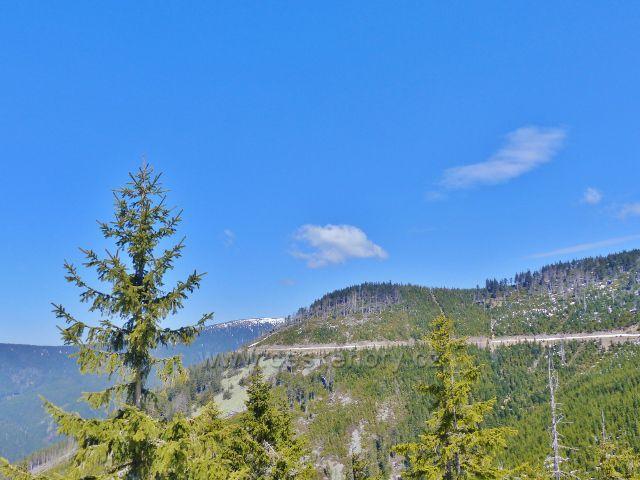 Zpětný pohled z úbočí Podbělky ke Králickému Sněžníku. Vpravo cesta pod Uhliskem