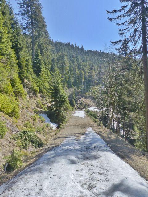 Nad údolím Kamenitého potoka