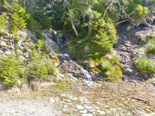 Kamenitý potok cca 150 m pod pramenem