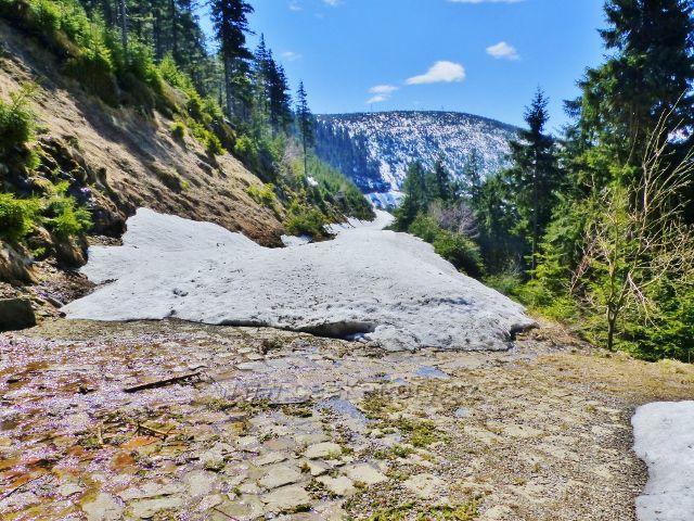 Kamenitý potok při překonávání vrstevnicové cesty odplavil veškerý sníh-Na obzoru Slamník