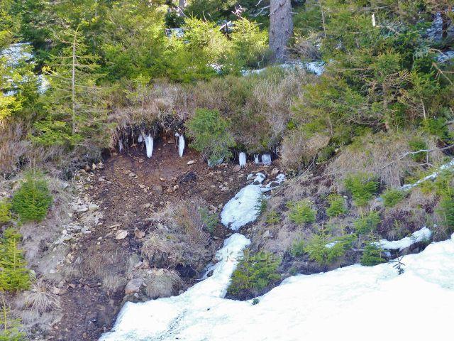 Tající sníh na úbočí Slamníku