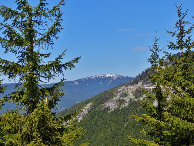 Pohled na Králický Sněžník z úbočí Slamníku