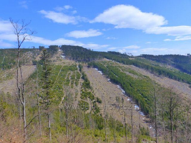 Pohled z úbočí Slamníku na protáhlý vrchol Chlumu (1118 m.n.m.)