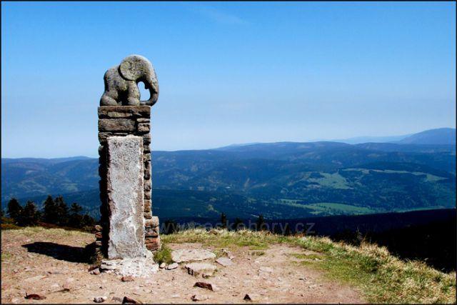 Slůně-symbol Králického Sněžníku