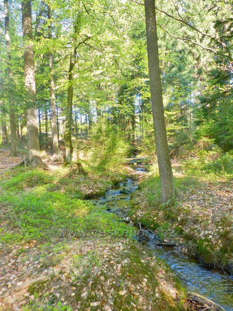 Kunvaldský potok