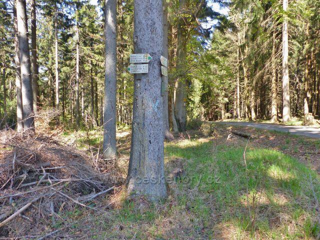 "Turistický rozcestník ""Žamberecké lesy"" na trase  červené a zelené TZ"