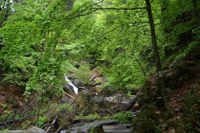 Cestou k vodopádům