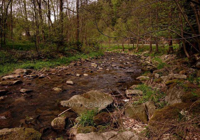 řeka Morava