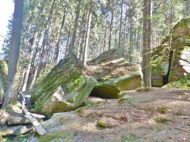 Odlomené skalní bloky nad Divokou Orlicí v PR Zemská brána