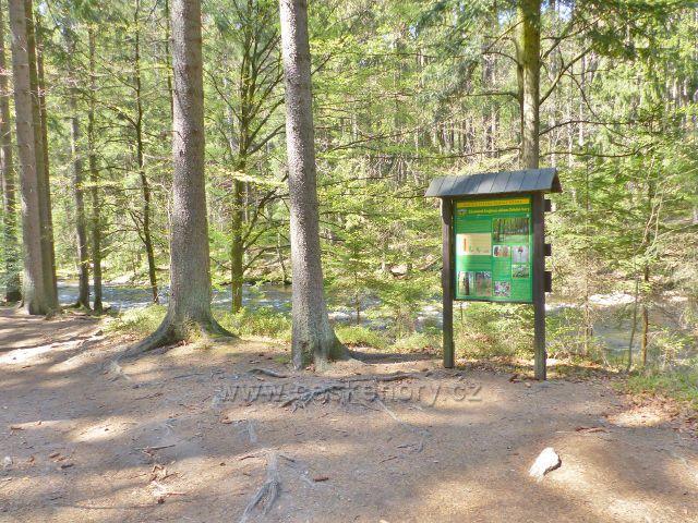Tabule NS Zemská bránya informuje o skladbě lesních porostů Orlických hor