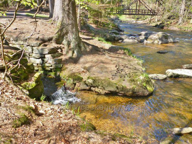 Pravostranný přítok potoka do Divoké Orlice pod Pašeráckou lávkou