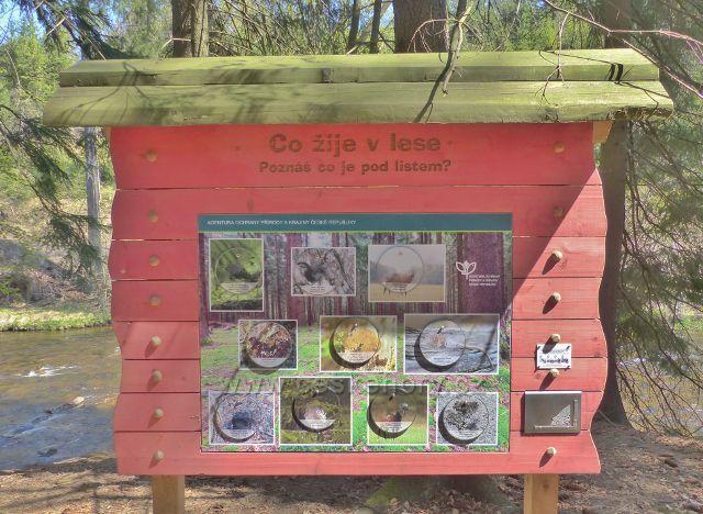 """Interaktivní zastavení NS Zemská brána - panel s tematikou """"Co žije v lese"""" a s první částí originální reliefní kresby v lokalitě bývalého Lusthausu"""