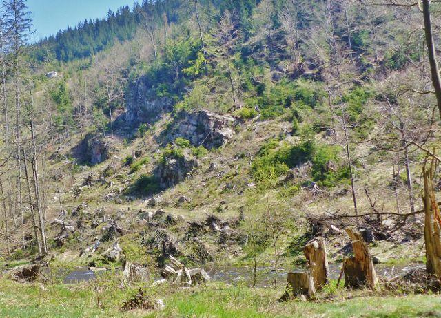 Odlesnění svahu nad levým břehem Divoké Orlice odkrylo nejen skalní výchozy,ale i pohled na protilehlý řopík