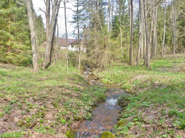 Potok Hadinec pod stejnojmennou osadou