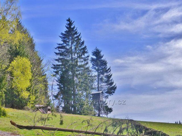 Posed a krmeliště zvěře na okraji lesa nad pastvinou Vrchní Orlice