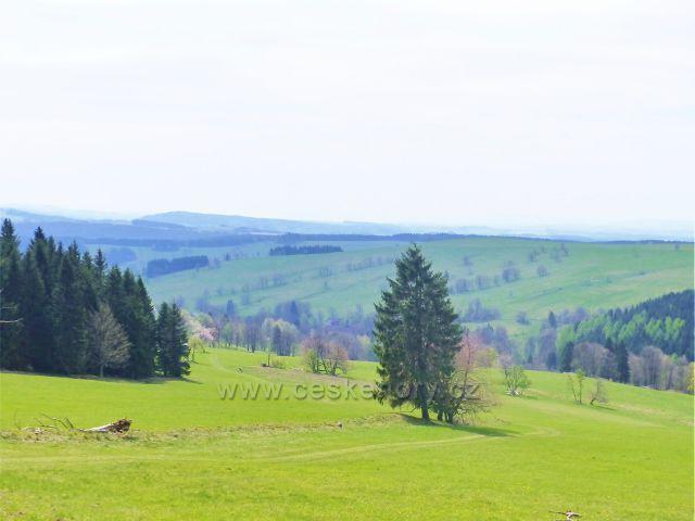 Pohled na pastviny Vrchní Orlice