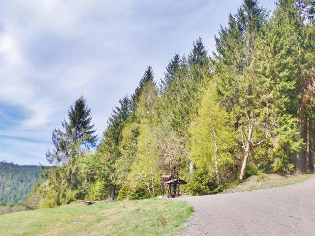 Turistický přístřešek Vysoký Kořen je současně rozhledovým místem do údolí Divoké Orlice  a Bukovohorskou hornatinu se Suchým vrchem