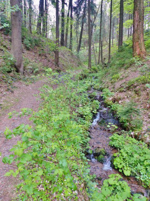 Plynárenský potok na hranici Lískovce(778 m.n.m.) a Mariánského kopce(770 m.n.m.)