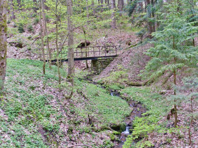 Mostek přes Plynárenský potok. Vede po něm stezka k Mariánskému pramenu