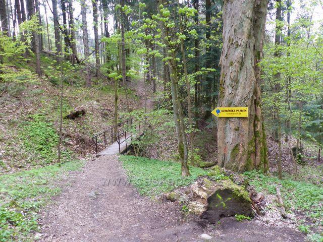 Odbočka k Mariánskému pramenu vede po mostku přes Plynárenský potok