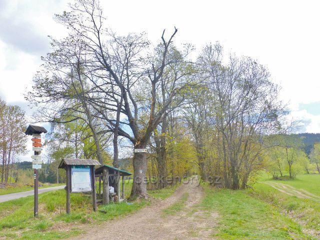 """Turistický rozcestník""""Horní Orlice(rozc.) 761 m.n.m."""""""