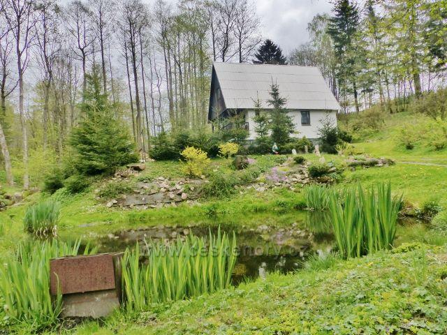Horní Orlice - rekreační chata s jezírkem
