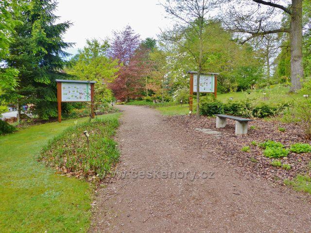 Žampach - arboretum Domova pod hradem