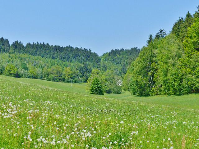 Údolí na horním toku Hnátnického potoka