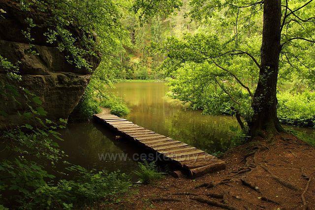 U Grieselova rybníka