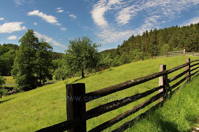 Pastviny u Srbské Kamenice