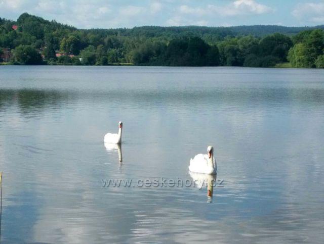Na rybníku Petráň