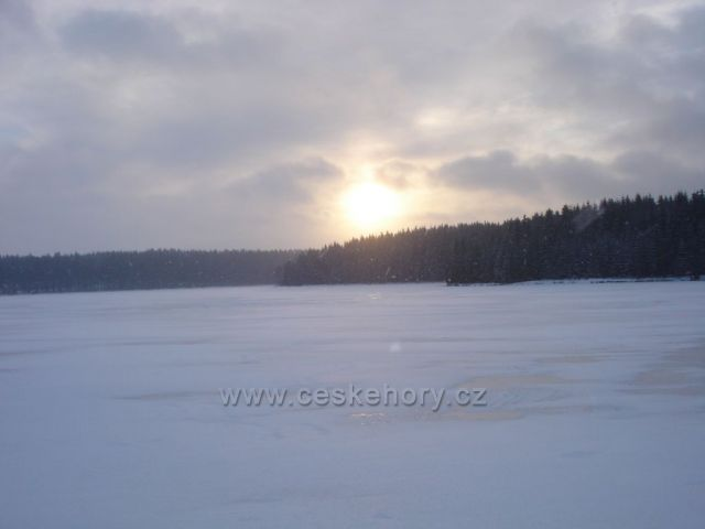 Medlovský rybník, Žďárské vrchy