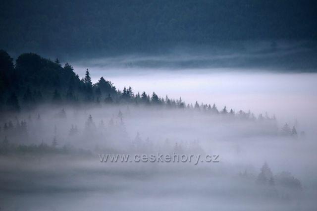 Fotka z krásného zamlženého rána u Českých Žlebů