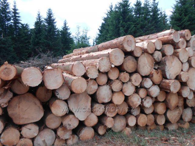 kůrovcové dřevo mezi Flájemi a Dlouhou Loukou