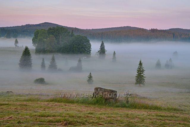 Kamenec nejvyšší hora české části Novohradských hor.